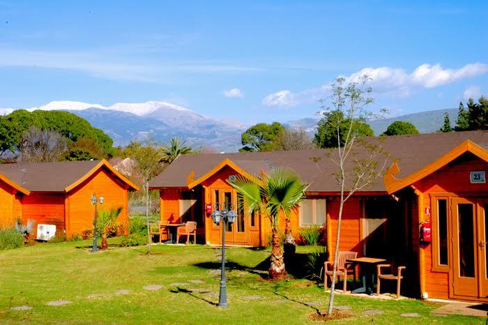 הוילג' מלון מטיילים על הירדן-רשת מטיילים